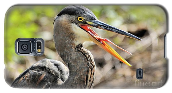 Great Blue Heron Tongue Galaxy S5 Case