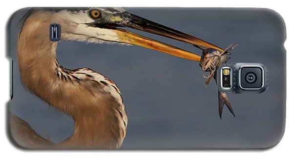 Great Blue Heron W/catfish Galaxy S5 Case