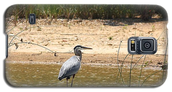 Great Blue Heron Wading Galaxy S5 Case by Sheila Brown
