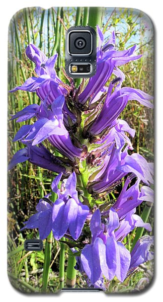Galaxy S5 Case featuring the photograph Great Blue Lobelia by Scott Kingery