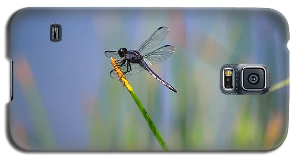 Galaxy S5 Case featuring the photograph Great Blue Skimmer by Brenda Bostic
