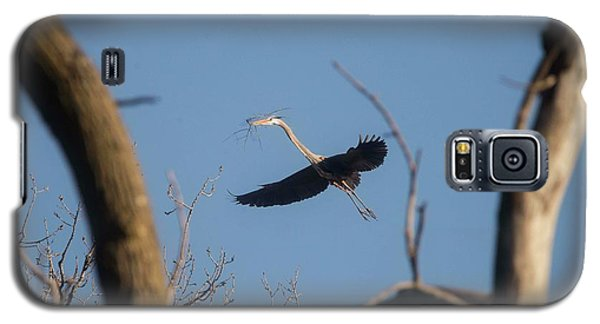 Galaxy S5 Case featuring the photograph Great Blues Nesting by David Bearden