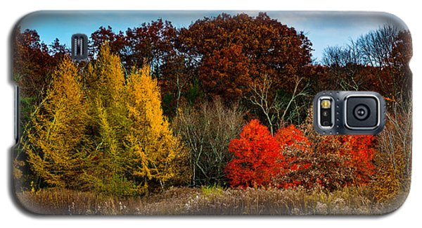 Great Brook Farm Autumn Galaxy S5 Case