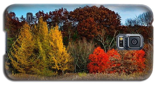 Great Brook Farm Autumn Galaxy S5 Case