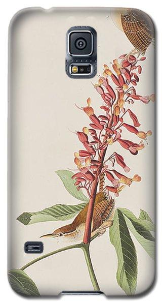Audubon Galaxy S5 Case - Great Carolina Wren by John James Audubon