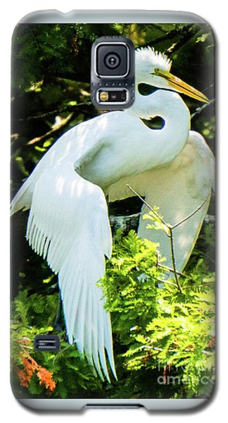 Great Egret Stretching Galaxy S5 Case