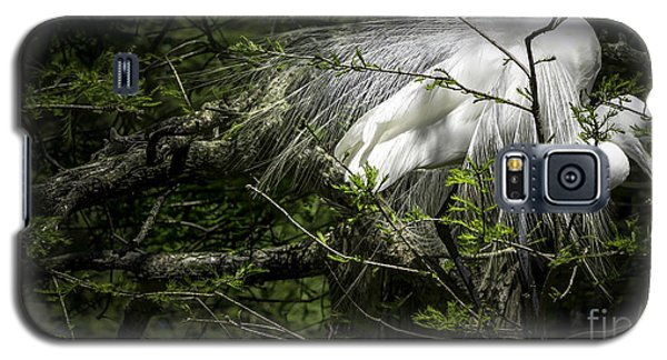 Great Egret #2 Galaxy S5 Case