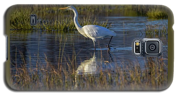 Great Egret, Ardea Alba, In A Pond Galaxy S5 Case