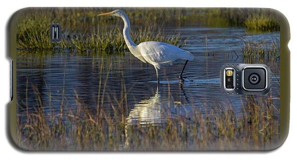 Great Egret, Ardea Alba, In A Pond Galaxy S5 Case