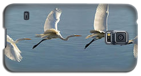 Great Egret Flight Sequence Galaxy S5 Case