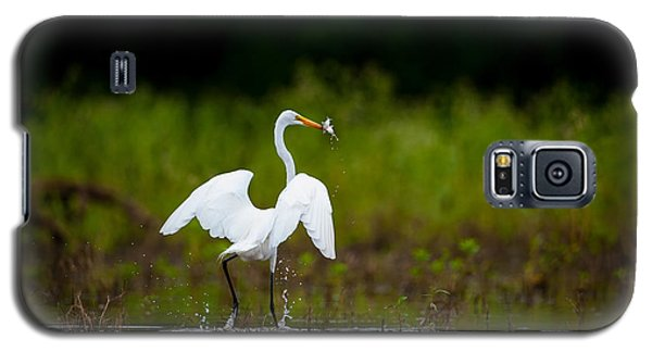 Great Egret, Great Fisherman Galaxy S5 Case