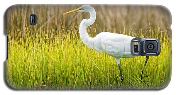 Galaxy S5 Case featuring the photograph Great Egret In Cedar Point Marsh by Bob Decker