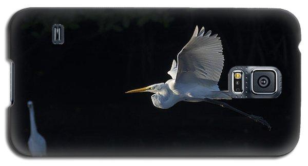 Great Egret In Morning Flight Galaxy S5 Case