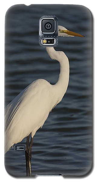 Great Egret In The Last Light Of The Day Galaxy S5 Case