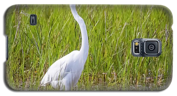 Galaxy S5 Case featuring the photograph Great Egret In The Spring  by Ricky L Jones