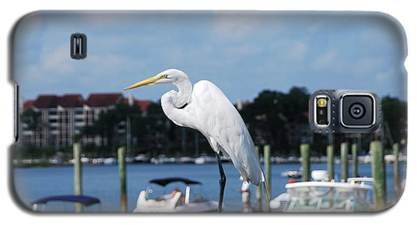 Galaxy S5 Case featuring the photograph Great Egret by Margaret Palmer