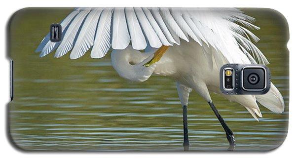 Great Egret Preening 8821-102317-2 Galaxy S5 Case