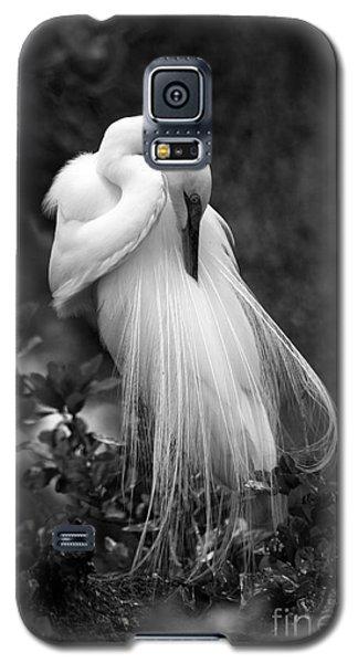 Zen Tree  Galaxy S5 Case