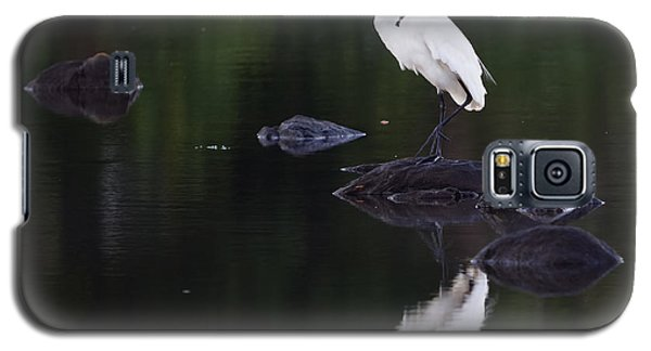 Great Egret Reflection Galaxy S5 Case