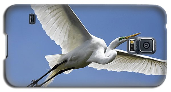 Great Egret Soaring Galaxy S5 Case