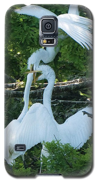 Great Egrets Horsing Around Galaxy S5 Case