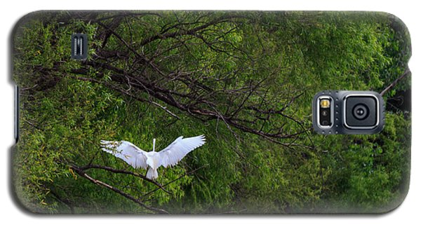 Great Egrets In The Shore Galaxy S5 Case