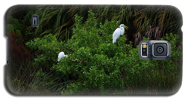 Great Egrets Galaxy S5 Case