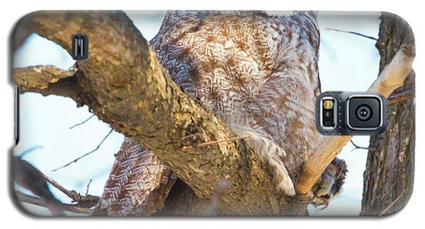 Great Gray Owl Galaxy S5 Case by Ricky L Jones