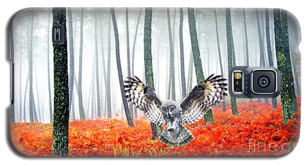 Owl Galaxy S5 Case - Great Grey Owl by Laura D Young