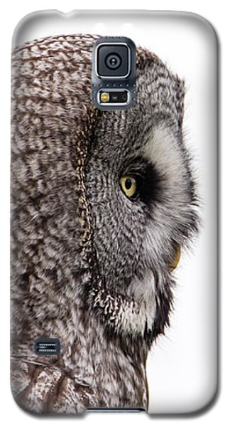 Great Grey's Profile On White Galaxy S5 Case