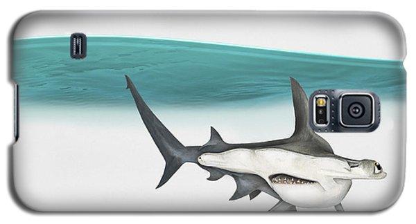 Great Hammerhead Sphyrna Mokarran - Squat-headed Hammerhead Shark - Grand Requin-marteau - Cornuda Galaxy S5 Case by Urft Valley Art