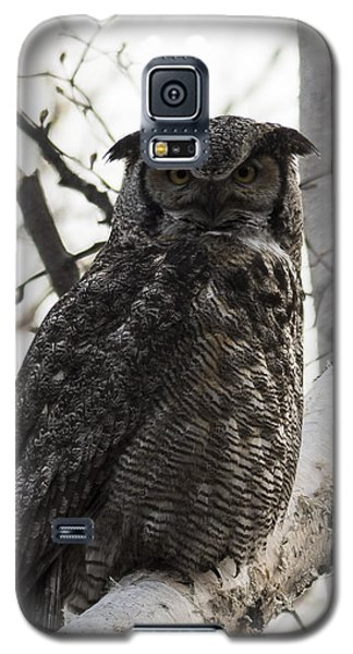 Great Horned Galaxy S5 Case