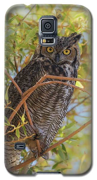 Galaxy S5 Case featuring the photograph Great Horned Owl At Summer Lake by Angie Vogel