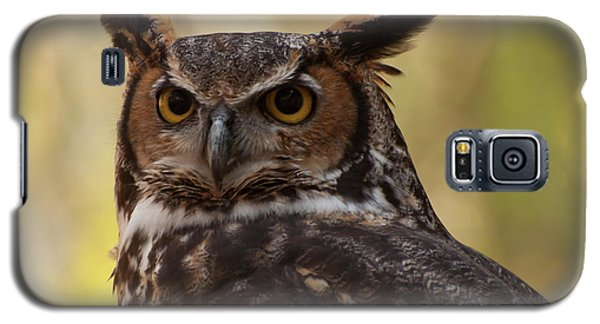 Great Horned Owl In A Tree 1 Galaxy S5 Case by Chris Flees