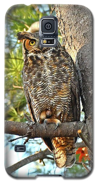 Great Horned Owl  Galaxy S5 Case