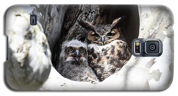 Great Horned Owl Nest Galaxy S5 Case
