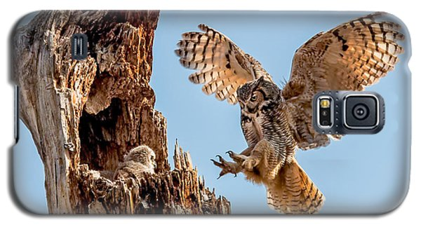 Great Horned Owl Returning To Her Nest Galaxy S5 Case