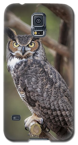 Galaxy S5 Case featuring the photograph Great Horned Owl by Tyson and Kathy Smith
