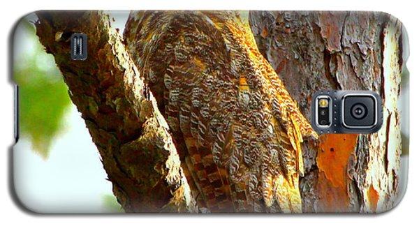 Great Horned Owl Wink Galaxy S5 Case by Barbara Bowen