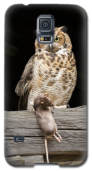Great Horned Owl With Dinner Galaxy S5 Case