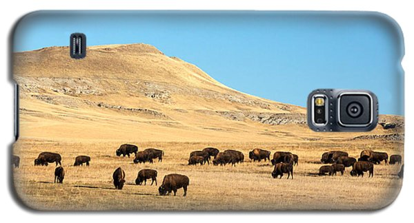 Great Plains Buffalo Galaxy S5 Case by Todd Klassy