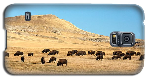 Bison Galaxy S5 Case - Great Plains Buffalo by Todd Klassy