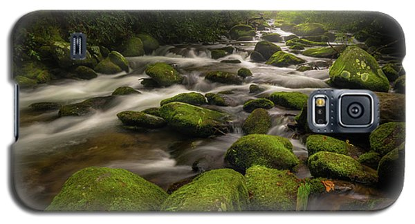 Great Smoky Mountains Roaring Fork Galaxy S5 Case