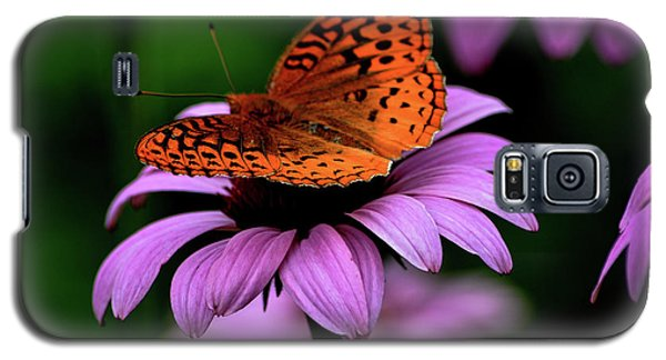 Galaxy S5 Case featuring the photograph Great Spangled Fritillary by Brenda Bostic
