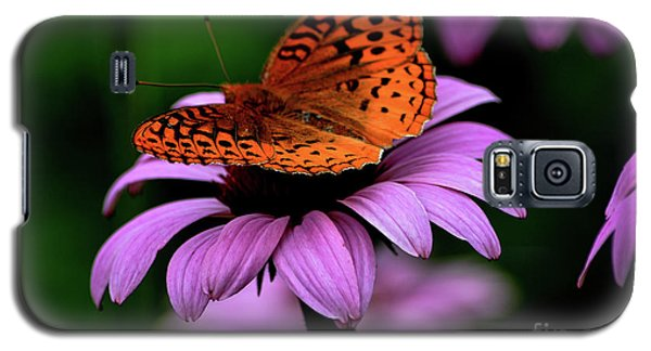 Great Spangled Fritillary Galaxy S5 Case by Brenda Bostic