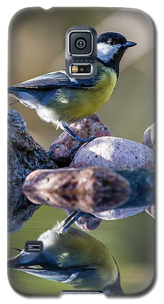 Great Tit On The Stone Galaxy S5 Case