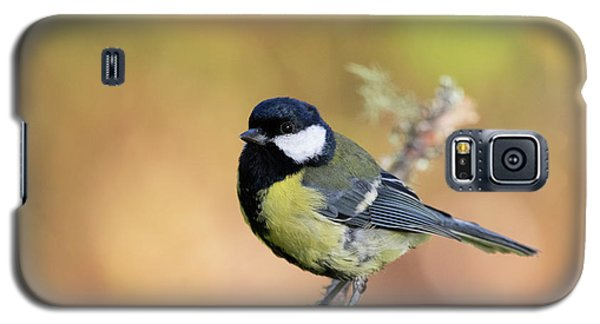 Great Tit - Parus Major Galaxy S5 Case