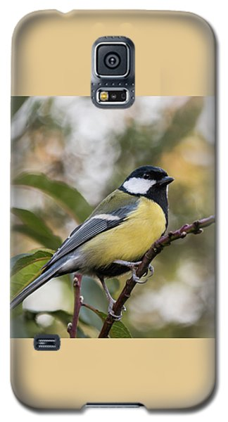 Great Tit Galaxy S5 Case