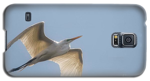 Galaxy S5 Case featuring the photograph Great White Egret - 2 by David Bearden