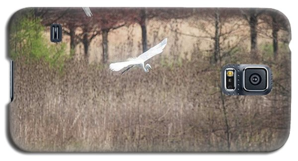 Galaxy S5 Case featuring the photograph Great White Egret - 3 by David Bearden